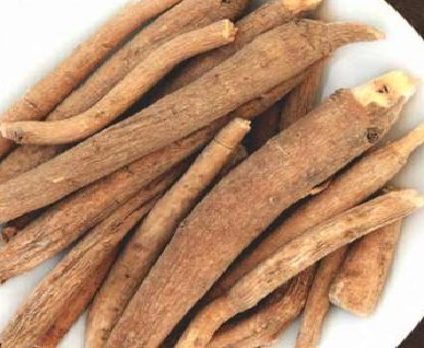 Ashwagandha Benefits in Hindi