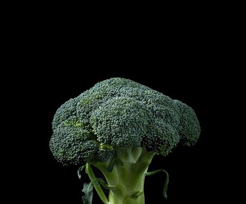 Broccoli Benefits in Hindi, What is Broccoli in Hindi, Broccoli Ke Fayde