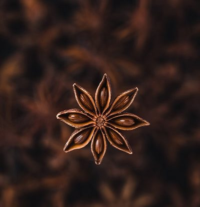 Star Anise Benefits in Hindi
