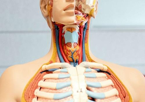 Throat Cancer in Hindi, Gale Ka Cancer in Hindi
