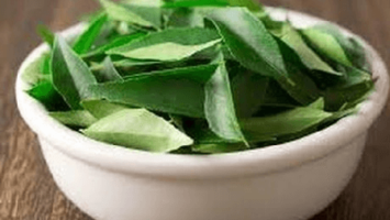 Kari Patta Ke Fayde in Hindi, Curry Leaves Benefits in Hindi
