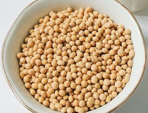Soya Bean Benefits in Hindi, Soybean Benefits in Hindi