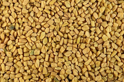 Methi Khane Ke Fayde, Fenugreek Benefits in Hindi